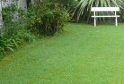Badgebup Lawn and turf 2