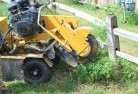 Badgebup Stump grinding services 3